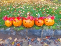 Halloween_19.jpg